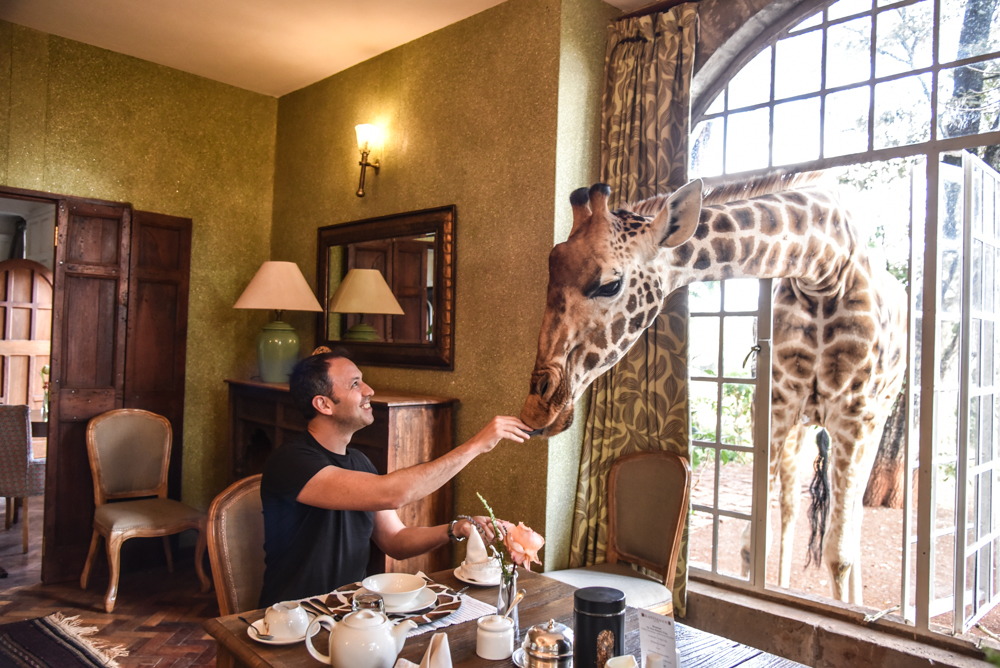 hotel-review-giraffe-manor_-52
