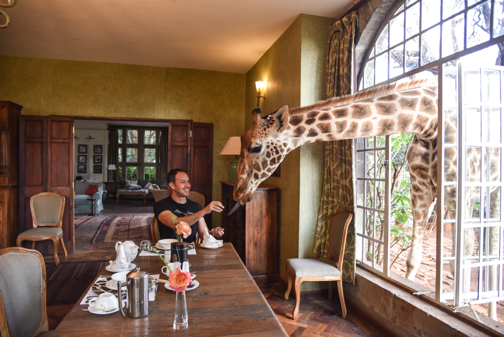 hotel-review-giraffe-manor_-53