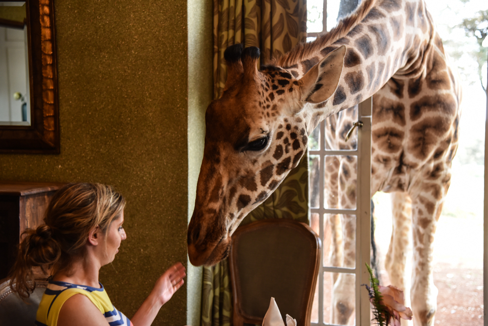 hotel-review-giraffe-manor_-56