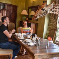 hotel-review-giraffe-manor_-57