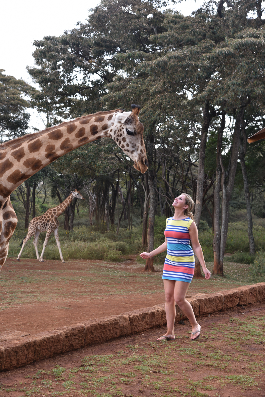 hotel-review-giraffe-manor_-66
