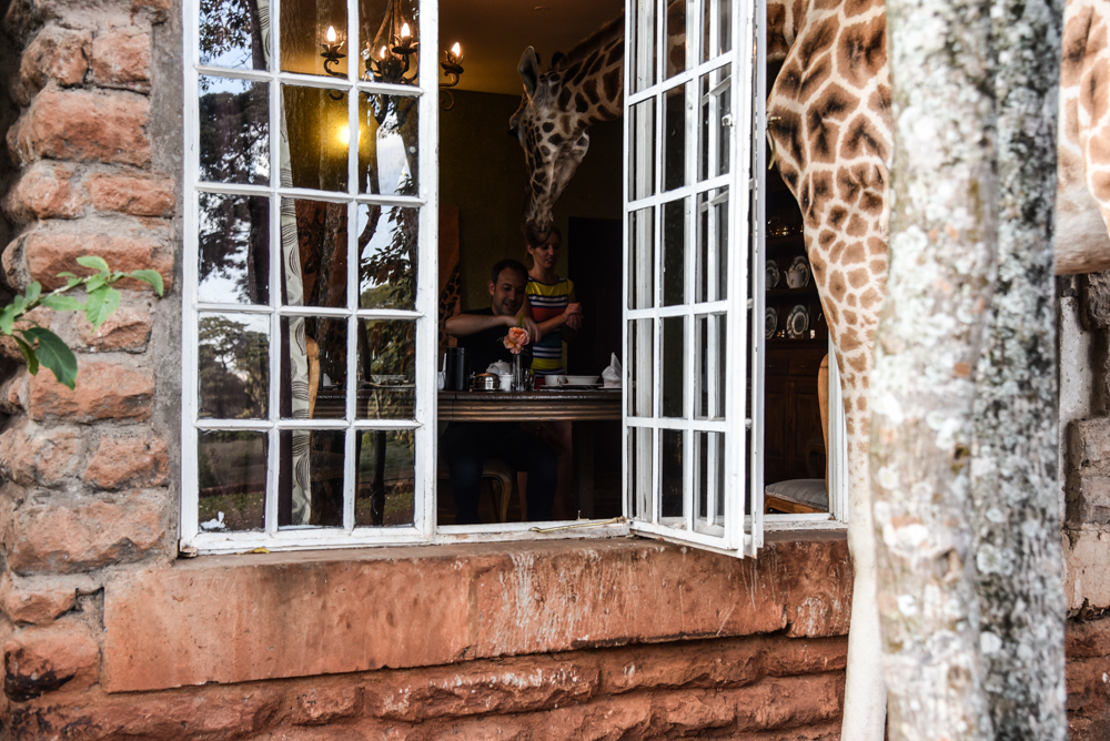 hotel-review-giraffe-manor_-66