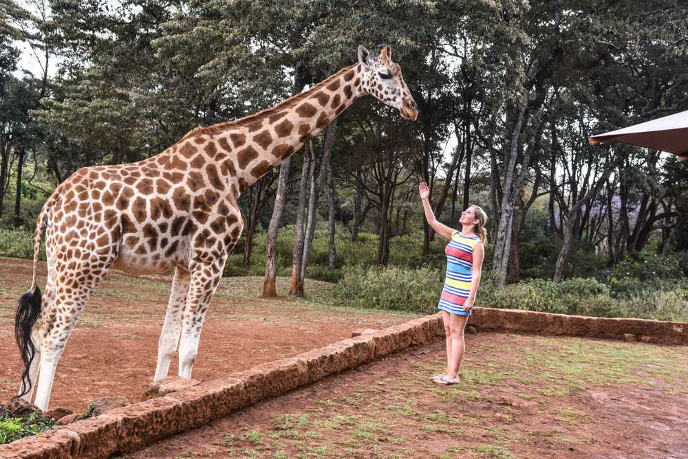 hotel-review-giraffe-manor_-67