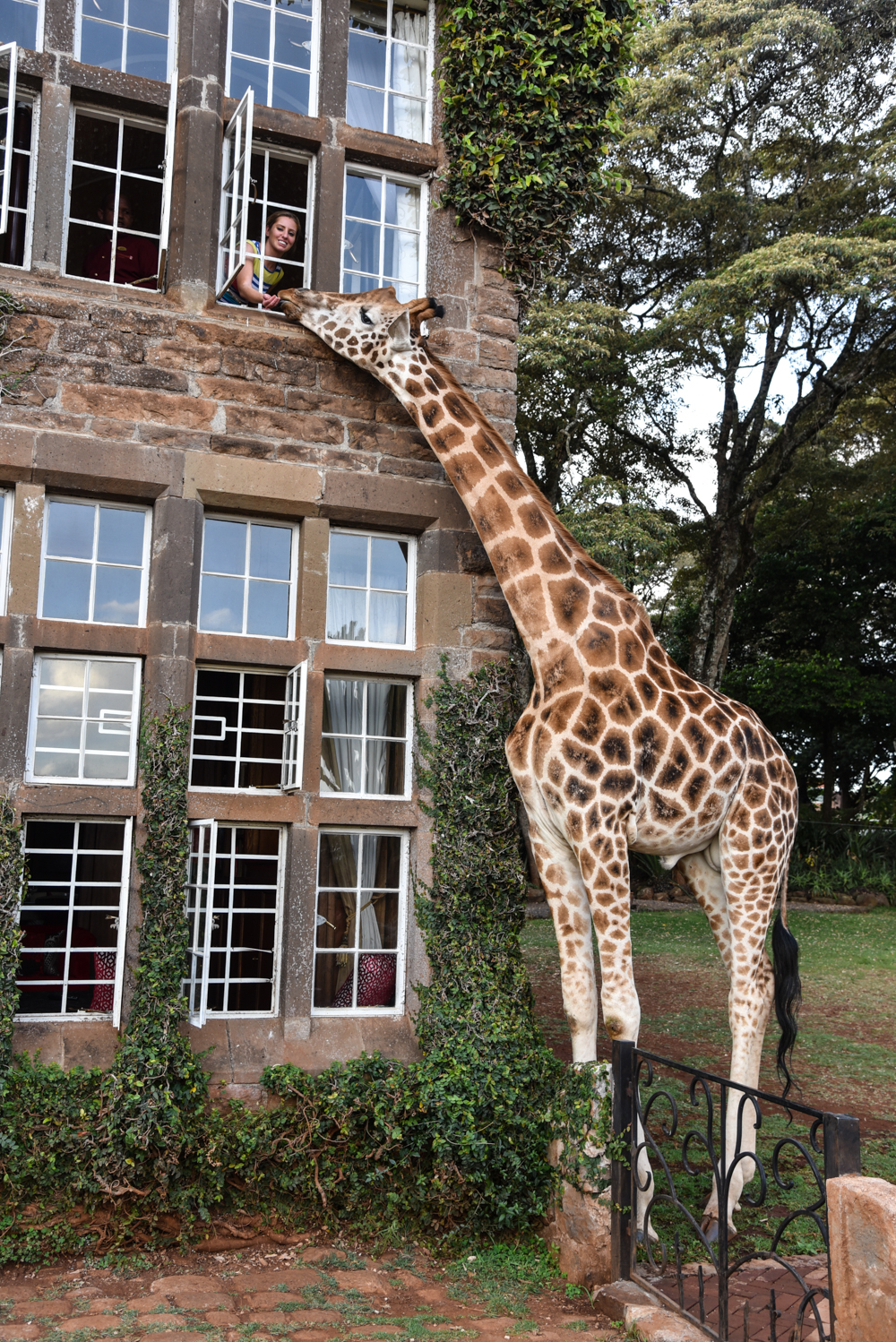 hotel-review-giraffe-manor_-89