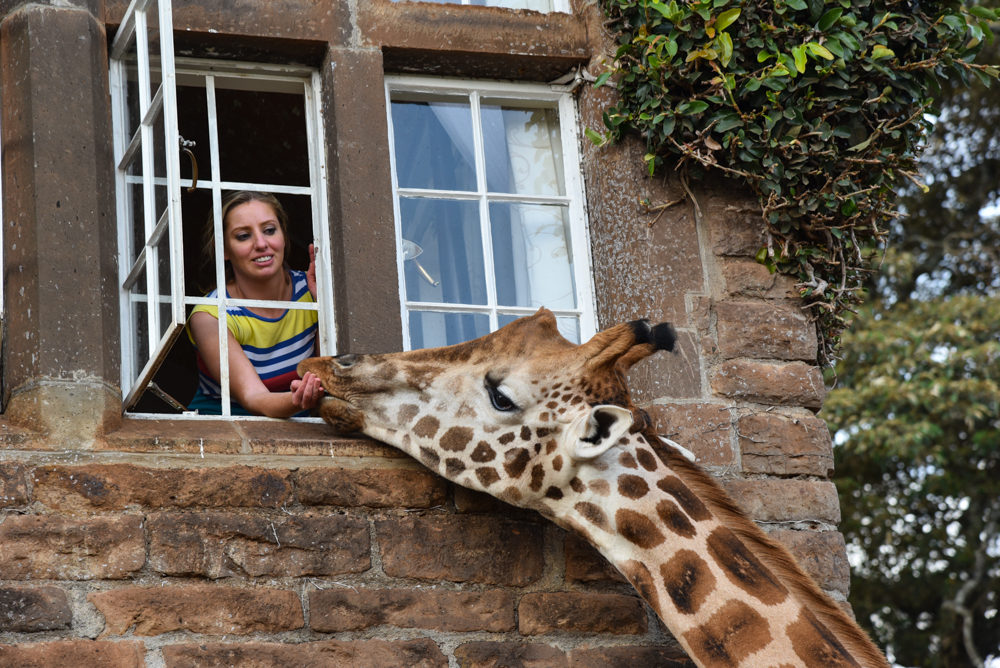 hotel-review-giraffe-manor_-90