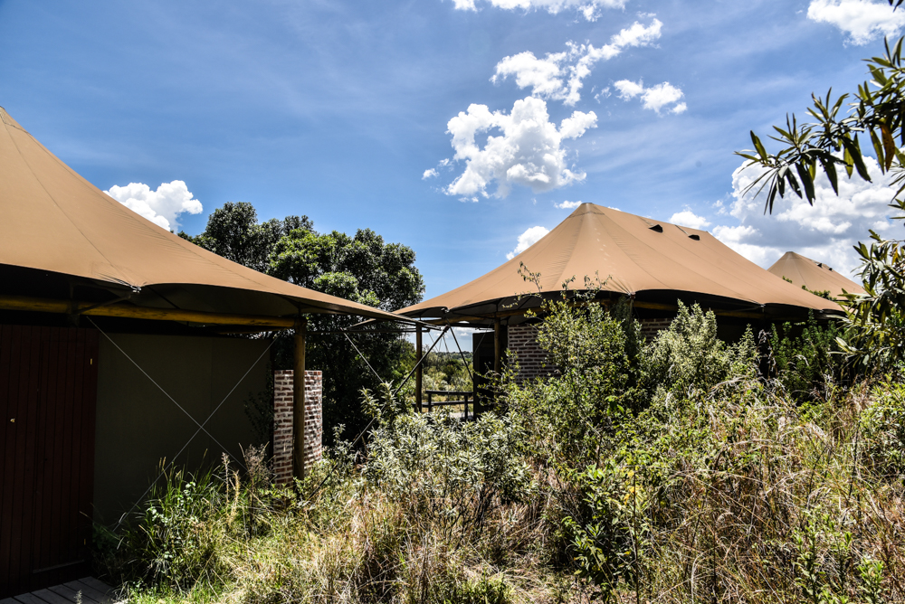 luxury-hotel-review-angama-mara-2-10