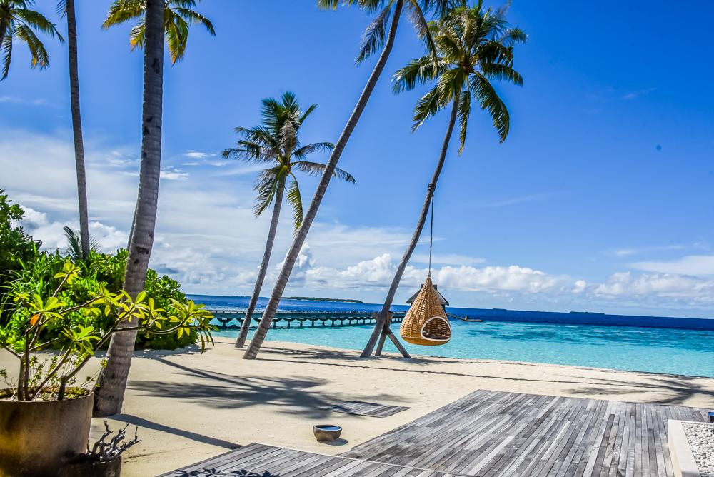 paradise hotel 2017 starter private diskrete uk